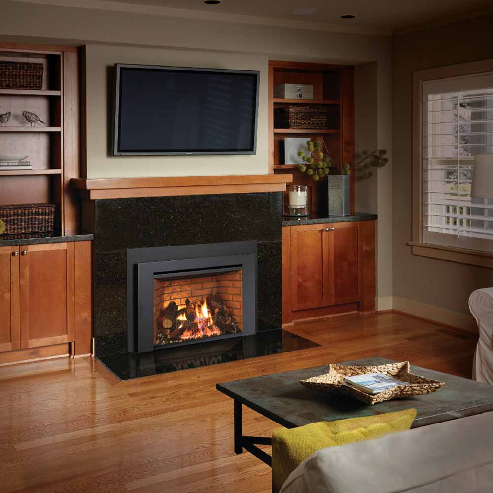 616 Gas Insert American Heritage Fireplace
